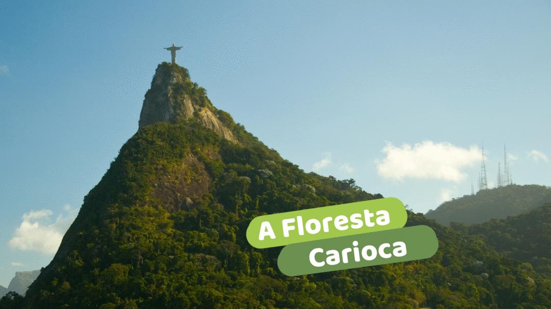 A Floresta Carioca