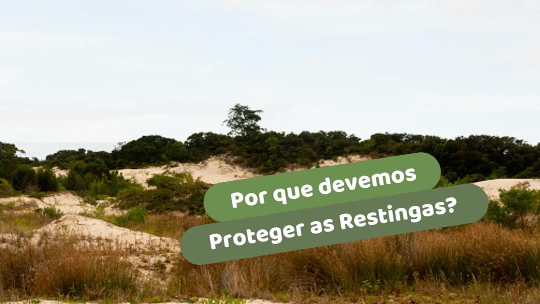 Por que devemos proteger as Restingas?