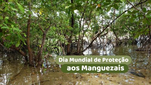 Dia Mundial de Proteção aos Manguezais