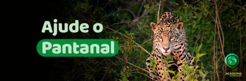 Ajude o Pantanal que vive
