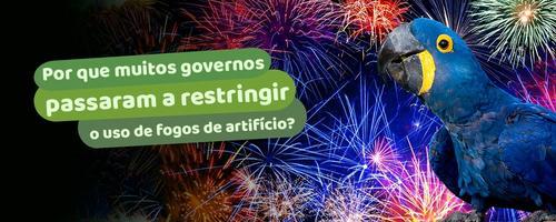 Por que muitos governos passaram a restringir o uso de fogos de artifício?