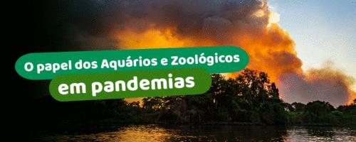 O papel dos zoológicos e aquários em pandemias